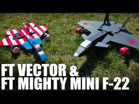 ft-vector--ft-mighty-mini-f22--flite-test