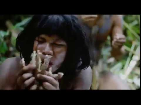 The Young Rochelles - Cannibal Island (Officially Unofficial Video) Greenway Records 2013