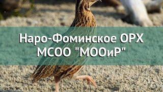 Наро фоминское охотничье рыболовное хозяйство филиал мсоо мооир