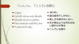 Tra Bo Dau