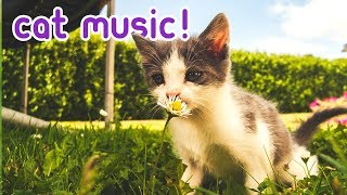 Extended Cat Music - Relaxing, Soothing Melodies for Felines 🐈