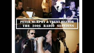 Warsaw by Peter Murphy & Trent Reznor (Originally by Joy Division)