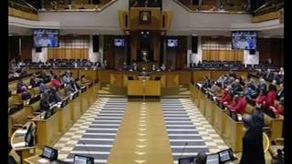 EFF Julias Malema Don