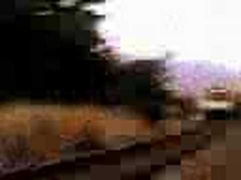 Video als Mann und Frau, die Sex beobachten