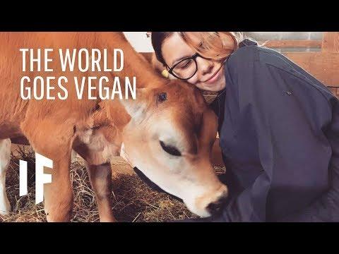 Co kdyby se ze všech lidí stali vegani?