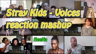 [STRAY KIDS] Voices Performance Video|reaction Mashup *request*