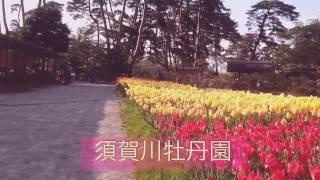 国指定名勝✨須賀川牡丹園📷虹とコラボ🌈GW福島観光スポット🚗