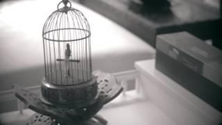 Lua - Flor Amargo (Video)