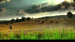 James Blunt - Best Laid Plans (Subtitulada En Español)