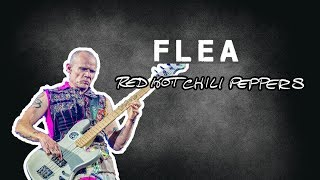 """Flea's Bass Rig Red Hot Chili Peppers - """"Know Your Bass Player"""" (part 1/2)"""