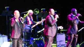 The Flamingos Mio Amore @ Mohegan Sun 1-15-17