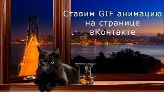 Котик объясняет как ставить GIF анимацию на страницу ВКонтакте
