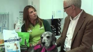 Nutrition - Senior Dogs