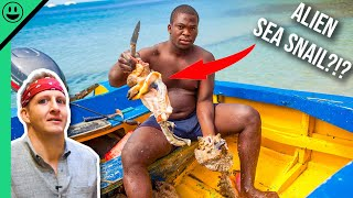 Bizarre Bahamas! Unseen Extreme ISLAND Seafood!!!