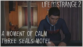 A Moment of Calm - Three Seals Motel