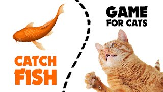 CAT GAMES  ★ catching FISH 1 hour