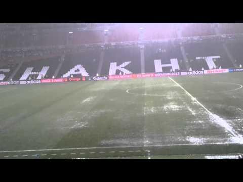 Ливень прервал матч Украина-Франция (видео)