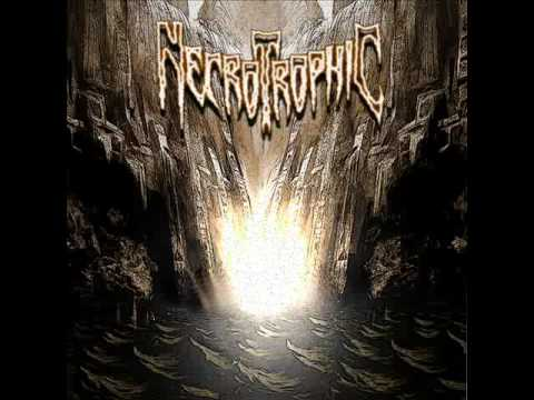 Necrotrophic - In Origin