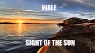 Sight of the Sun - Fun feat. Wale
