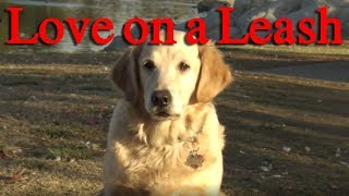 LOVE ON A LEASH - ralphthemoviemaker