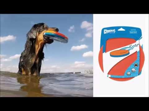 Chuckit Water Skimmer Hundefrisbee bei hundeshop.de