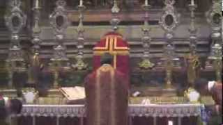 preview picture of video 'FSSP 25th Anniversary Solemn Mass in Rome'
