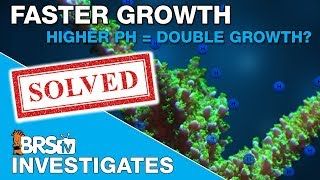 BRStv Investigates: Can high pH increase your coral growth rate?