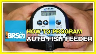 Programming the Lifegard Intellifeed Automatic Fish Feeder - BRStv How-To