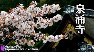Japanese Relaxing Music : Cherry Blossoms in Grand Head Temple : Music For Yoga, Work, Study