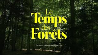 """[Film] """"Le Temps des Forêts"""", immergez vous au coeur de la forêt française."""