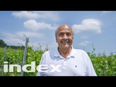 Hogyan lehet pénzt keresni nyugdíjas korában