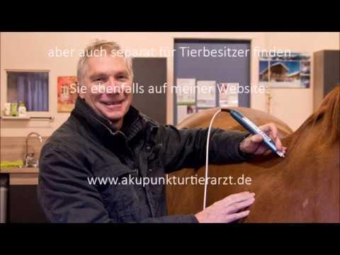 Laserakupunktur Petermann