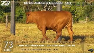 Coro 2421 b4 fiv