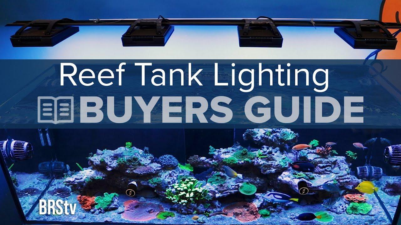 Watch BRStv - Reef Lighting Buyers Guide