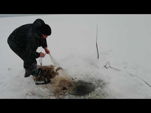 В Усинском районе рыбнадзор изъял незаконные сети