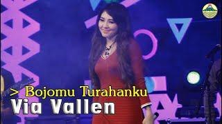 Via Vallen - Bojomu Turahanku   |   Official Video