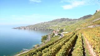 Le franc fort: risque et chance pour le tourisme suisse Video Preview Image