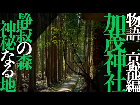 Kamo Shrine,Kyoto 4K 【加茂神社】物語二〜京都編〜
