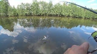 Пермяковское озеро нижний новгород рыбалка