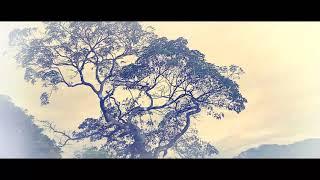 preview picture of video 'Buntu kapere' | gunung dengan suasana seperti pegunungan teletabis teletabis'