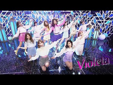 아이즈원 (IZ*ONE) - 비올레타 (VIOLETA) / 교차편집 / STAGE