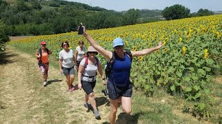 Walks in Tuscany from up above - www.walkaboutitaly.com
