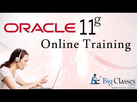 Online Demo Session