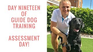 GUIDE DOGS TRAINING   DAY 19   ASSESSMENT DAY!