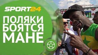 «Левандовски - один из лучших игроков мира!» | Sport24