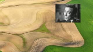 Danny Boy : 노래 : Andy Williams