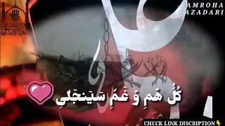 amroha azadari Channel videos