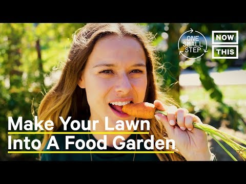 Why You Should Turn Your Lawn Into a Food Garden