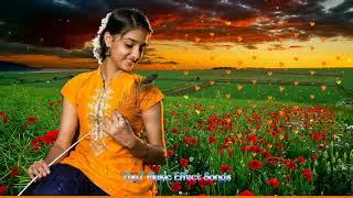 அன்னக்கிளியே உன்னை தேடுதே அந்தி பகலா    Tamil Echo Songs    Annakkiliye Unnai Theduthe