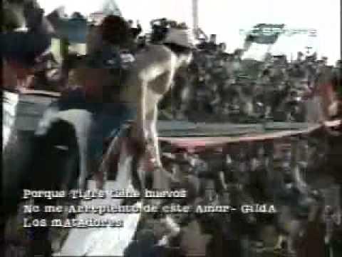 """""""Porque yo soy del Matador (El Aguante - 1997)"""" Barra: La Barra Del Matador • Club: Tigre"""